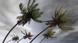 Miami hurricane doors